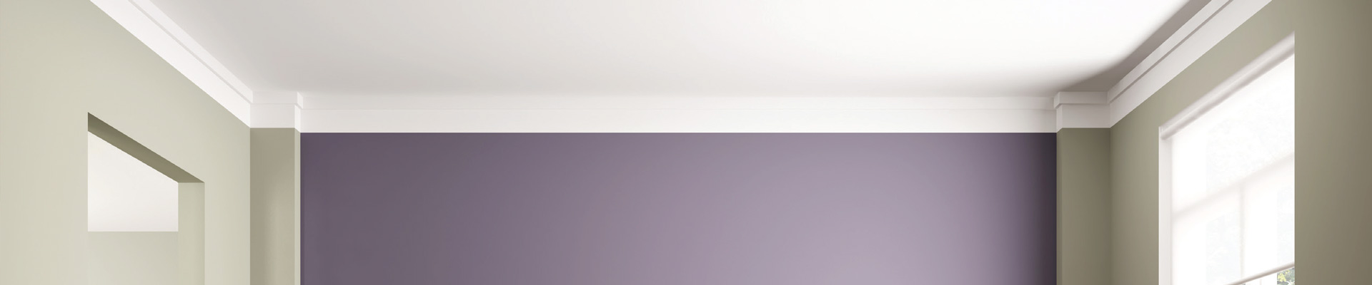 https://www.srpltd.co.nz/uploads/images/ceilings-banner.jpg